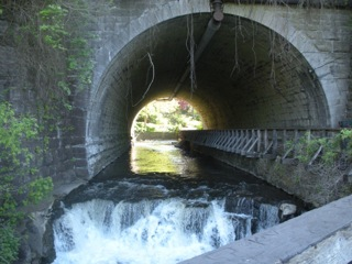 Corbett's Glen Tunnel