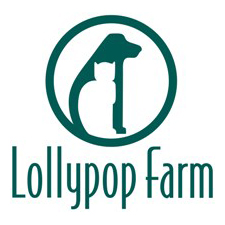 Lollypop_Logo_2005_Green_smaller.jpg
