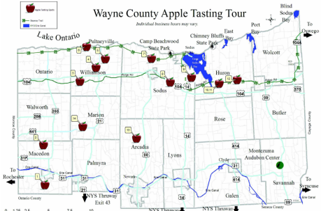 apple tasting tour.png