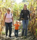 Wickham Farms Corn Maze
