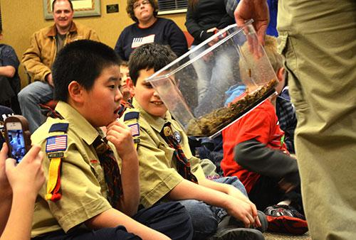 Boy Scout Workshop Merit Badge Kids Out And About Rochester