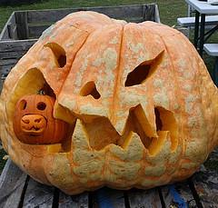 Giant pumpkin carving and chainsaw carving demonstration at