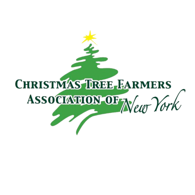Visit Website - Christmas Tree Farms In Greater Rochester, NY Kids Out And About
