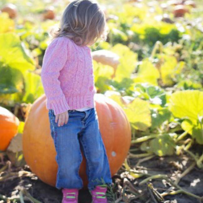 Master Guide to Fall Fun in Greater Rochester, NY | Kids Out